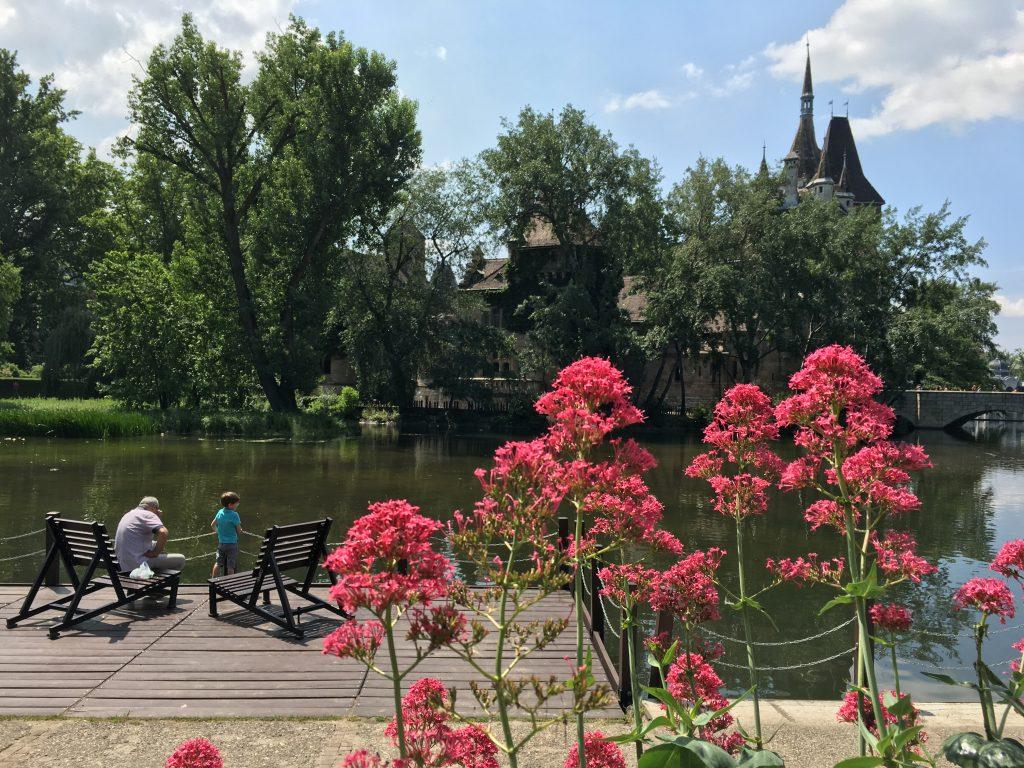 ヴァイダフニャド城はヨーロッパ最大の農業博物館を有し、周りをスケートリンクで囲まれているユニークなお城で、風貌は中世のお城のイメージそのもの。その周りの公園は市民の憩いの場で、犬を散歩させる人も数多く見られました。